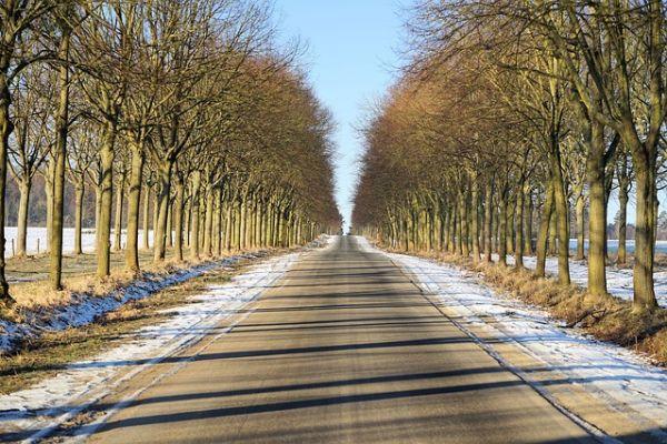 Topla i sunčana januarska sreda