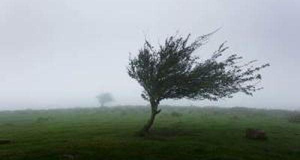 Сутра олујни ветар у кошавском подручју и на планинама
