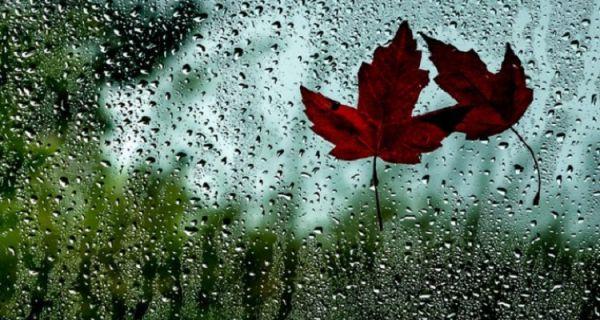 Danas tmurno,kišovito i hladno